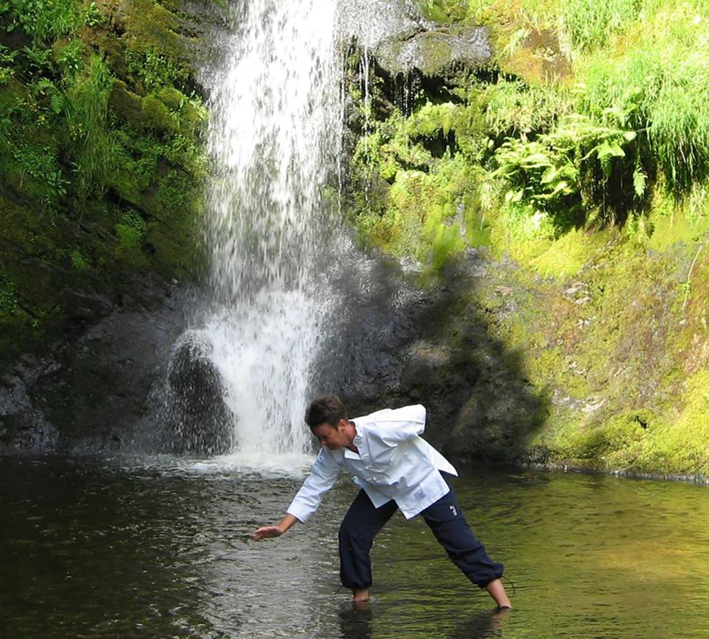 Daoist Five Yin Qigong Instructor Course
